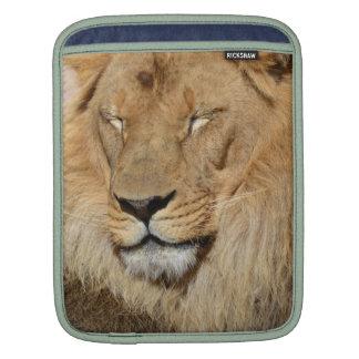 Adorable Lion iPad Sleeve