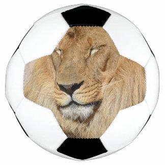 Adorable Lion Soccer Ball