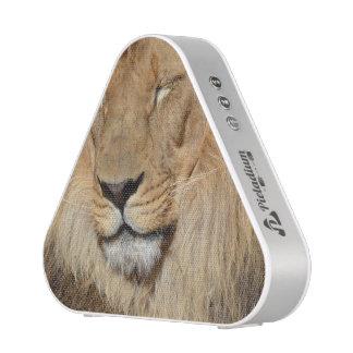 Adorable Lion Speaker