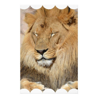 Adorable Lion Stationery