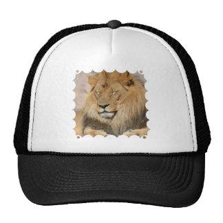 Adorable Lion Trucker Hat