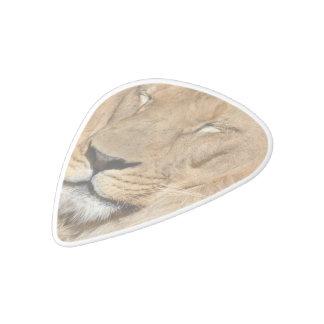 Adorable Lion White Delrin Guitar Pick