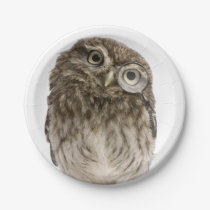 Adorable little owl wearing magnifying glass paper plate