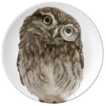 Adorable little owl wearing magnifying glass porcelain plate