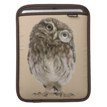 Adorable little owl wearing magnifying glass sleeve for iPads