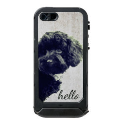 Incipio Feather Shine iPhone 5/5s Case with Poodle Phone Cases design