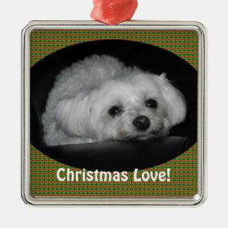 Adorable Loving Maltese Christmas Puppy Ornament
