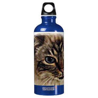 adorable Lynx Point Birman Cat Liberty Water bottl Water Bottle