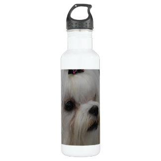 Adorable Maltese 24oz Water Bottle