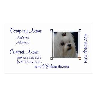 Adorable Maltese Business Card