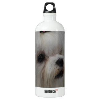 Adorable Maltese SIGG Traveler 1.0L Water Bottle