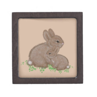 Adorable Mama and Baby Bunny in Clover Jewelry Box