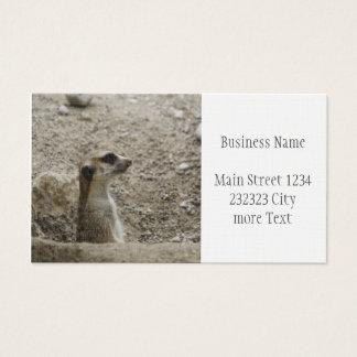 Adorable meerkat business card