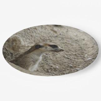 Adorable meerkat paper plate