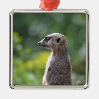 Adorable Meerkat Square Metal Christmas Ornament