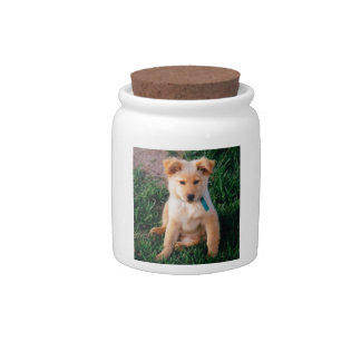Adorable Mixed Breed Puppy Candy Jars