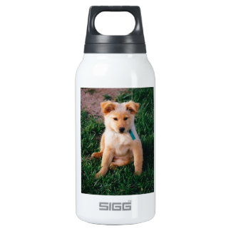 Adorable Mixed Breed Puppy Insulated Water Bottle
