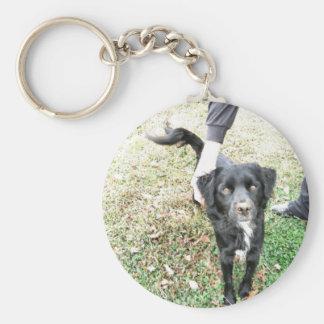 Adorable Mixed Lab Dog Basic Round Button Keychain