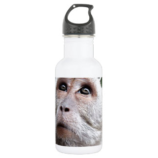 adorable monkey stainless steel water bottle