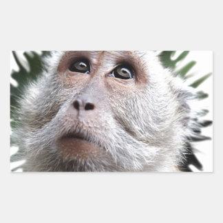 adorable monkey stickers