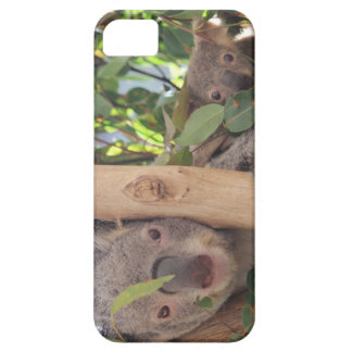 Adorable Mother and Baby Koala iPhone SE/5/5s Case
