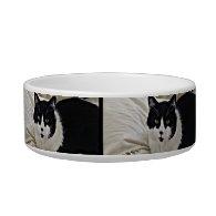 Adorable Moustache Black Cat pet food bowl Cat Bowl