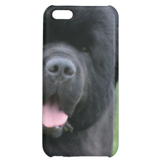 Adorable Newfoundland iPhone 5C Covers