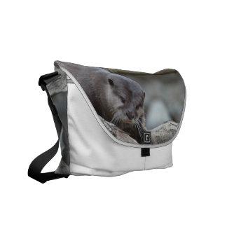 Adorable Otter Courier Bag