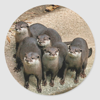 Adorable Otter Family Classic Round Sticker