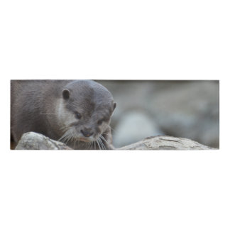 Adorable Otter Name Tag
