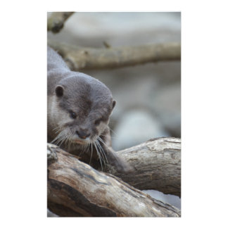 Adorable Otter Stationery