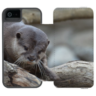 Adorable Otter Wallet Case For iPhone SE/5/5s