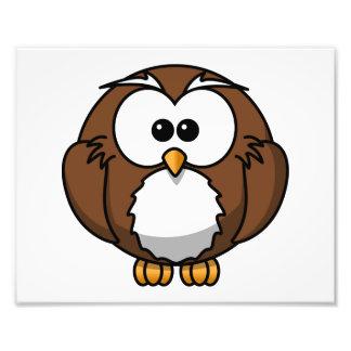 Adorable Owl Cartoon Art Photo Art