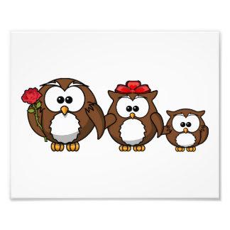 Adorable Owl Family Art Photo