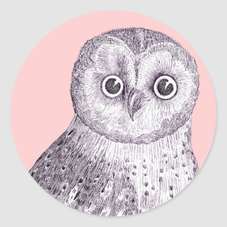 Adorable Owl - Spotted or Barred Owl Antique Print Round Stickers