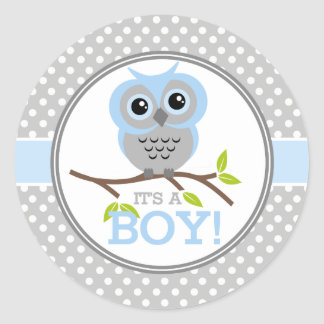 Adorable Owls Its a Boy Classic Round Sticker