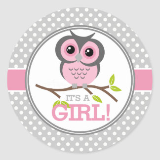 Adorable Owls Its a Girl Classic Round Sticker