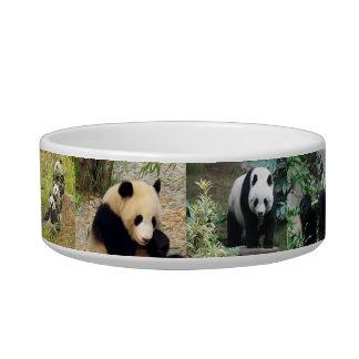 ADORABLE PANDAS BOWL