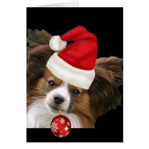 Adorable Papillon  dog in a Santa hat Cards