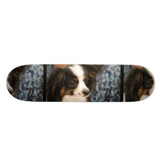 Adorable Papillon Skateboard