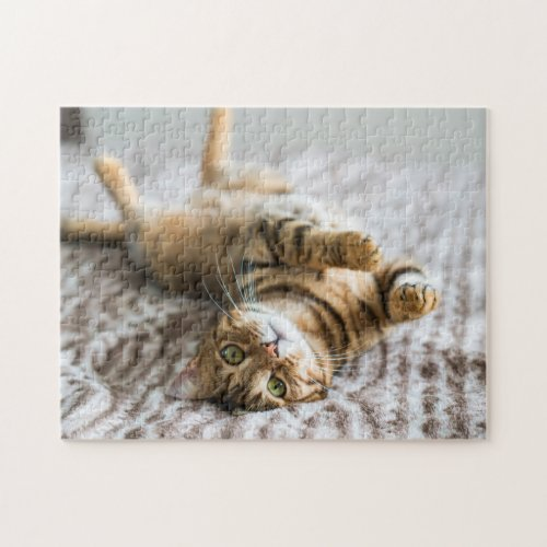 Adorable Pets 11 x 14 Jigsaw Puzzle
