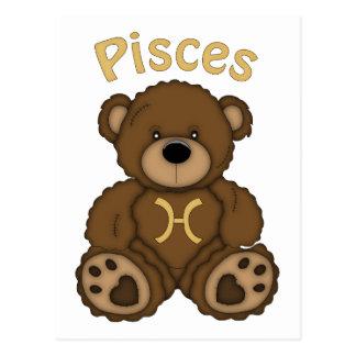 Adorable PISCES Astrology Teddy Bear Tees Postcard