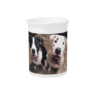 adorable pitbull puppies dogs pitcher