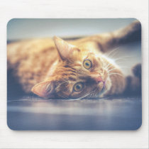 Adorable Playful Cat Mouse Pad