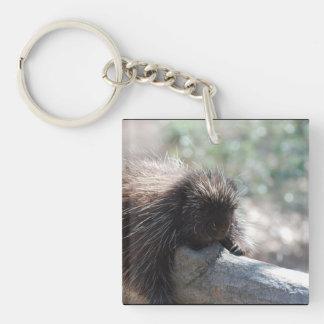 Adorable Porcupine Acrylic Keychains