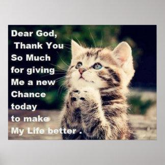 Adorable Praying Kitten Poster