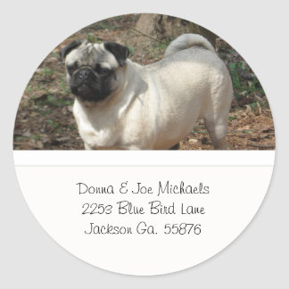 Adorable Pug Address Labels Round Stickers