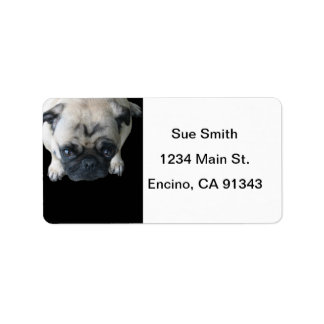 Adorable Pug Avery Address Labels