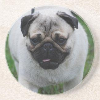 Adorable Pug Beverage Coaster