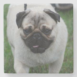 Adorable Pug Stone Coaster